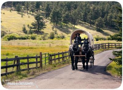 Kiowa Creek Coaqches, LLC | Mead, CO | Event Limousine | Photo #7