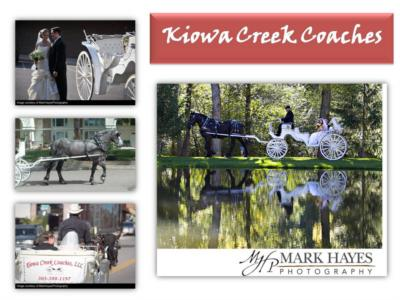 Kiowa Creek Coaqches, LLC | Mead, CO | Event Limousine | Photo #5