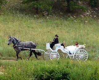 Kiowa Creek Coaqches, LLC | Mead, CO | Event Limousine | Photo #2