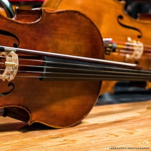 Keene String Quartet | Old Bridge Chamber Orchestra String Quartet