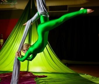 Down To Earth Aerials - Acrobat - Raleigh, NC