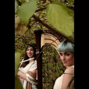 Gloucester City Chamber Music Duo | The Small Wonder Flute & Harp Duo