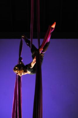 Kelly Jo Stull - Circus Extraordinaire | Baltimore, MD | Acrobat | Photo #10