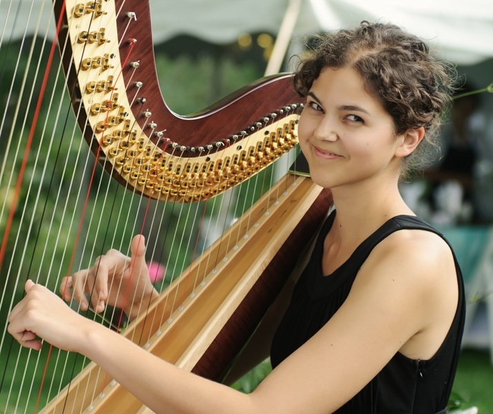Stephanie Claussen, harpist - Harpist - Saint Paul, MN