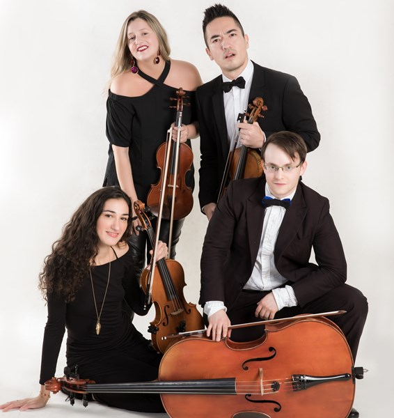 The Velveteen Ensemble - String Quartet - New York City, NY