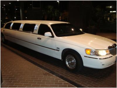 Crosstown Limos | Plymouth, MI | Party Bus | Photo #4