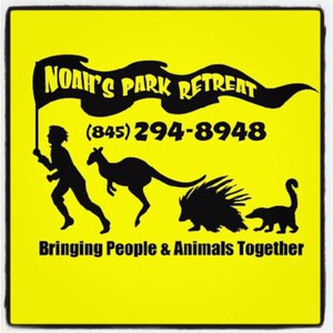 Westchester Petting Zoo | Noah's Park Retreat