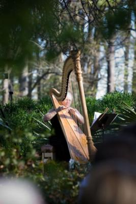 Harp by Mary Margaret Jones | Suffolk, VA | Harp | Photo #2