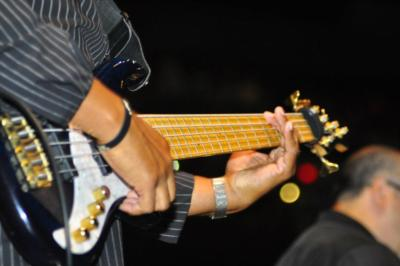Energetic Seasoned Bassist | Irvine, CA | Singer Guitarist | Photo #2