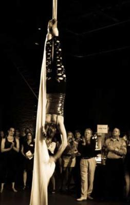 Wonderson Aerialist Duo | Charleston, SC | Circus Act | Photo #10