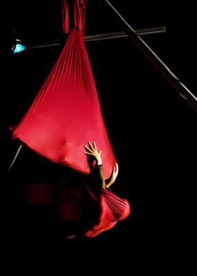 Wonderson Aerialist Duo | Charleston, SC | Circus Act | Photo #6