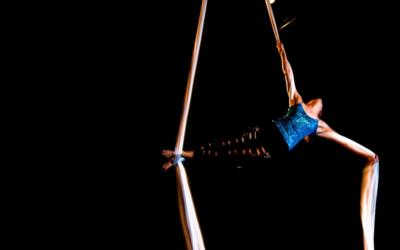 Wonderson Aerialist Duo | Charleston, SC | Circus Act | Photo #8