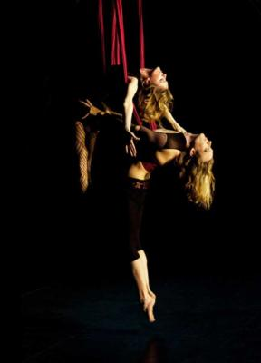 Wonderson Aerialist Duo | Charleston, SC | Circus Act | Photo #1