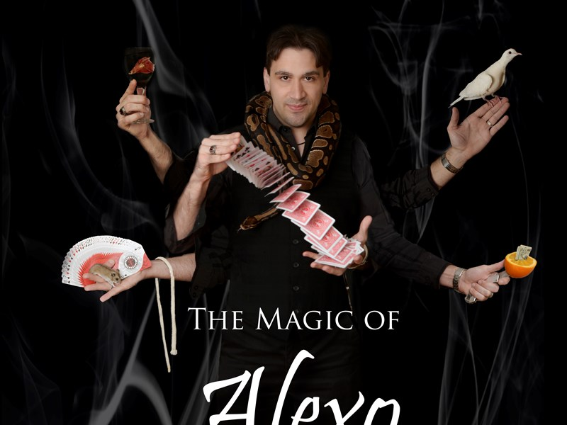 Magic of Alexo: Long Island Party Magician - Magician - Coram, NY