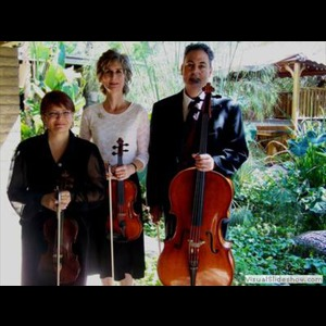 Laveen Chamber Music Quartet | Chandler String Quartet