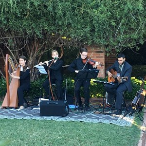 Plano Irish Band | Erin Shore Productions - Folk Music Bands in D/FW