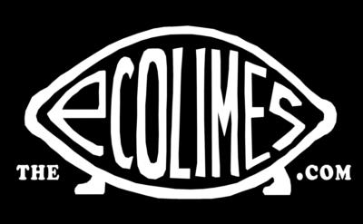 EcoLimes | Minocqua, WI | Cover Band | Photo #2