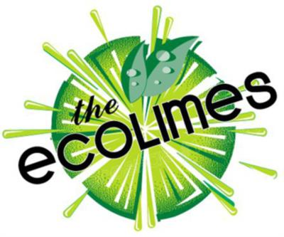EcoLimes | Minocqua, WI | Cover Band | Photo #5