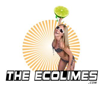 EcoLimes | Minocqua, WI | Cover Band | Photo #4