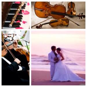 Fishers Island Classical Duo | Vsmusic4u