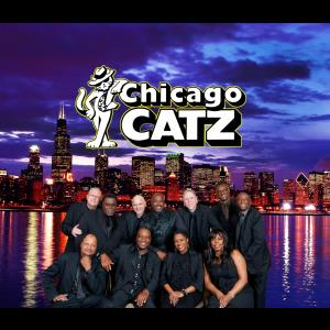 The Chicago Catz - Dance Band - Chicago, IL