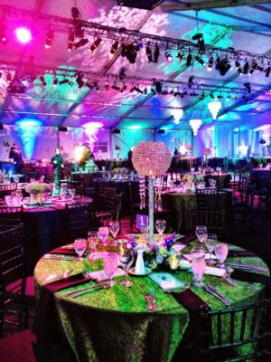 Arena Americas | Chicago, IL | Party Tent Rentals | Photo #12