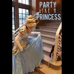 Party Like A Princess - Costumed Character - Chicago, IL