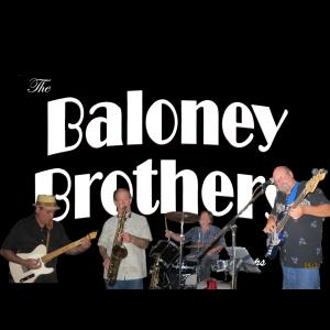 The Baloney Brothers - Cover Band - Joliet, IL