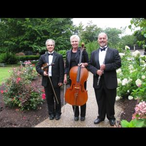 New London Classical Trio | Allegro Chamber Players