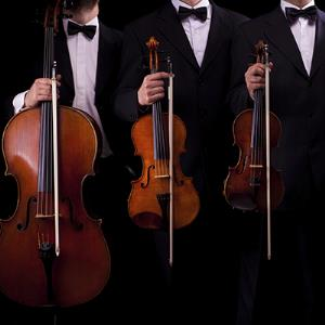 Syracuse Classical Trio | Consonance Music Ensembles