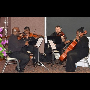 Cincinnati Classical Quartet | The Element String Quartet