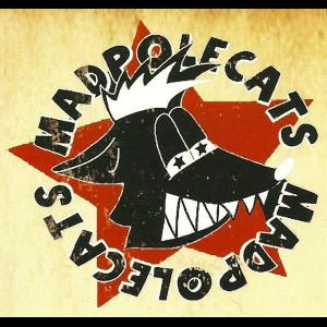 MadPolecats - Variety Band - Madison, WI