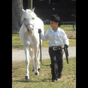 Pony Time Ranch  - Animal For A Party - Lowellville, OH