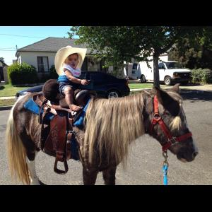 Rancho Cucamonga, CA Pony Rides | Betty Jean's Party Ponies