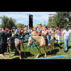 Pony Express Pony Rides, Petting Zoo - Pony Rides - Longmont, CO