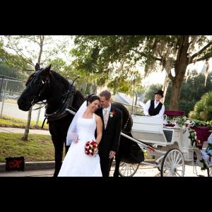 Avalon West Carriage Service - Animal For A Party - Brooksville, FL