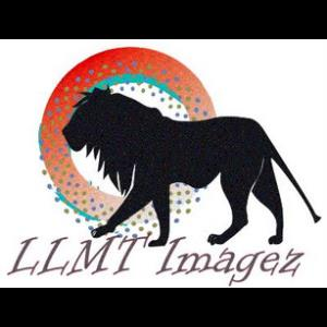 LLMT Imagez - Photographer - Miami, FL