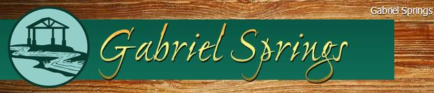 Gabriel Springs Events