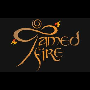 Tamed Fire - Fire Dancer - Fresno, CA