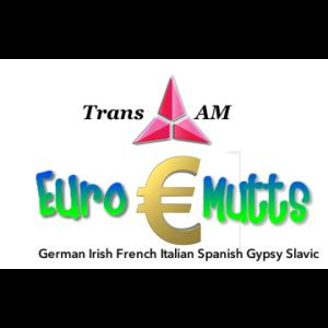 Trans Am Euro Mutts - Polka Band - Miamisburg, OH