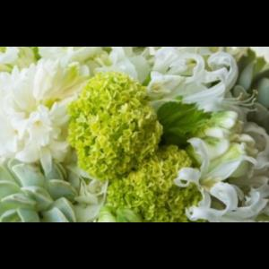 PJ's Flowers & Events - Florist - Phoenix, AZ