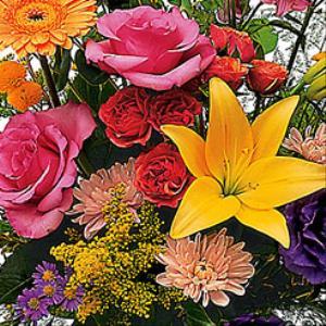 Mayfield Florist Florist Tucson Az Gigmasters