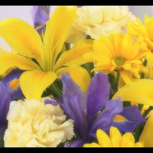 Farmington Center Florist Inc - Florist - Detroit, MI