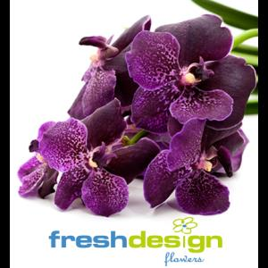 Fresh Design Flowers - Florist - Milwaukee, WI