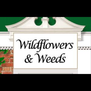Wildflowers & Weeds - Florist - Milwaukee, WI
