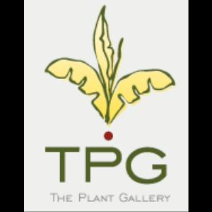 The Plant Gallery - Florist - New Orleans, LA