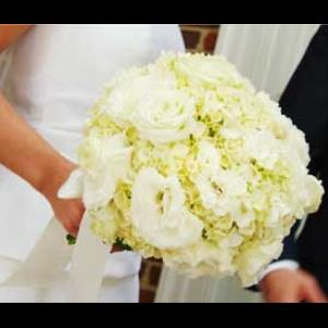 Kelly Odom Flowers - Florist - Raleigh, NC