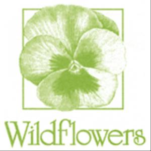 Wildflowers - Florist - Saint Louis, MO