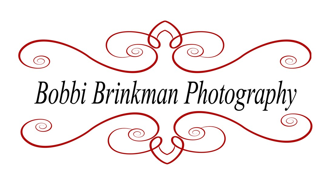 Bobbi Brinkman Photography - Photographer - Saint Louis, MO