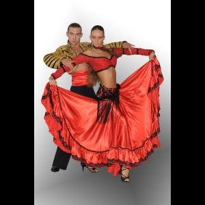 Artsiom and Volha dance duo Ex-libris - Ballroom Dancer - Boston, MA